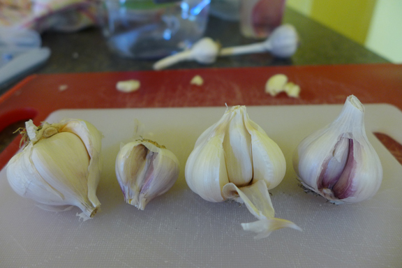 2013 garlic