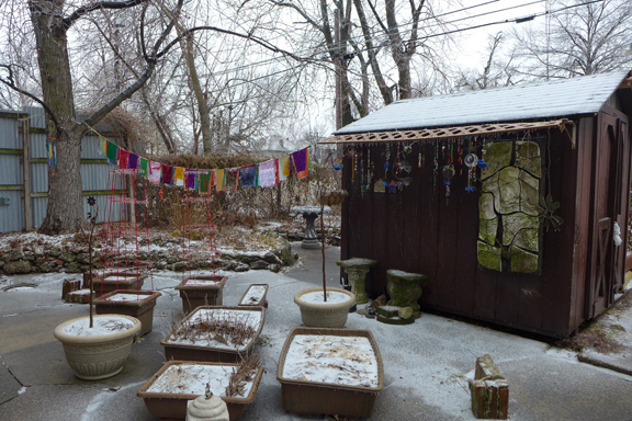 yard in the ice