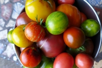This Year's tomato palette