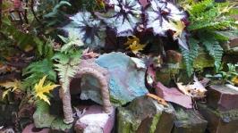 begonia arch