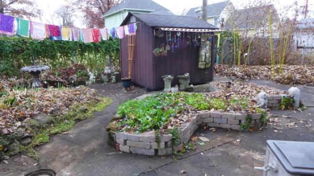 garden view November 2014