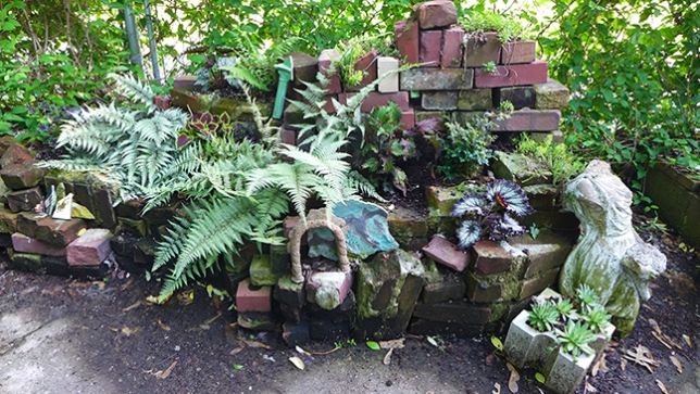 this year's fern garden