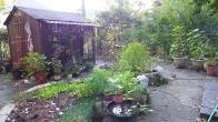 full garden in October
