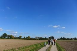 a walk among the fields