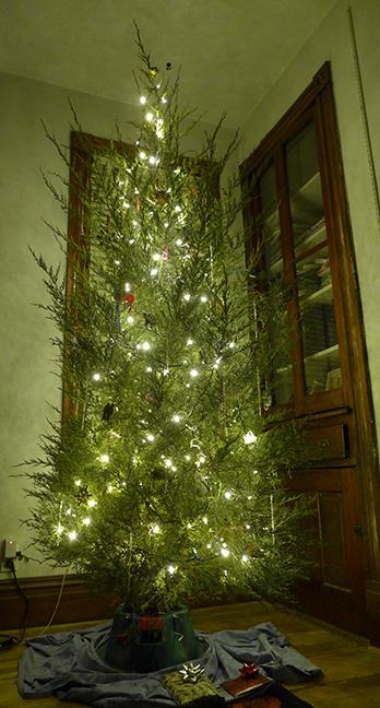 The 2016 Tree