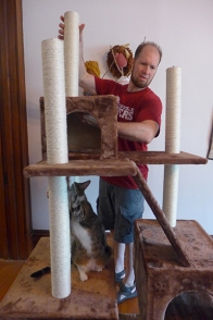 building the cat tree