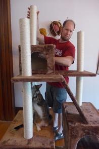 building the cat tree