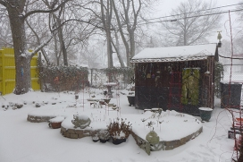 my back yard in the snow