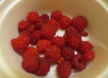 my red raspberry harvest