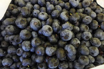 bluberries (not from my garden)