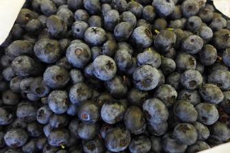 bluberries (not from my garden)