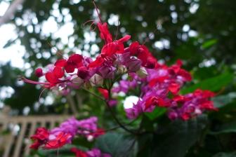 flowers mimic art