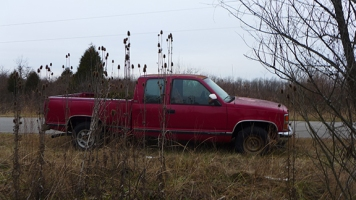 green trees and a red truck