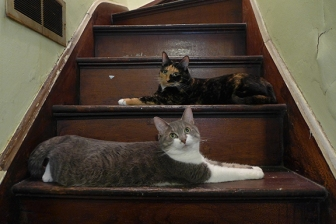 The Ladies by the heat vent