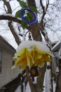 tree jewelry in the snow