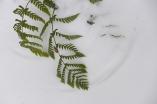 fern patterns in the snow in my garden