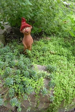 German Garden Weasel