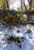 snowy garden art
