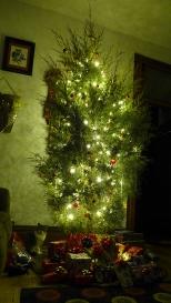 The Christmas Tree (and Lady Ygraine)